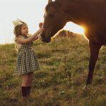 טיפול בעזרת סוסים – טיפול ייחודי אשר פותר מגוון רחב של בעיות