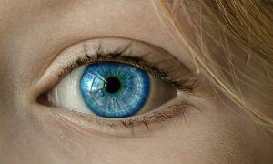 בדיקת עיניים ראשית